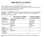 hop-dong-lao-dong