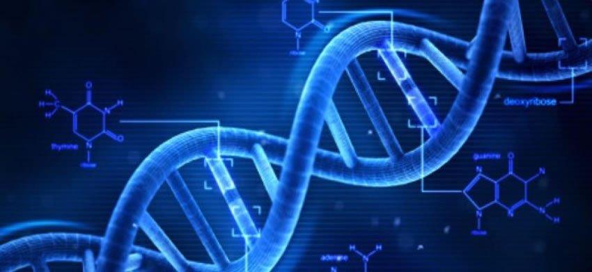Chống tái phát ung thư bằng miễn dịch sinh học