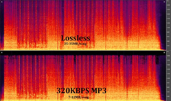 Dòng nhạc Lossless và sự khác biệt so với nhạc thường